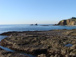 Tide pools at Crescent Bay, Laguna Beach, CA