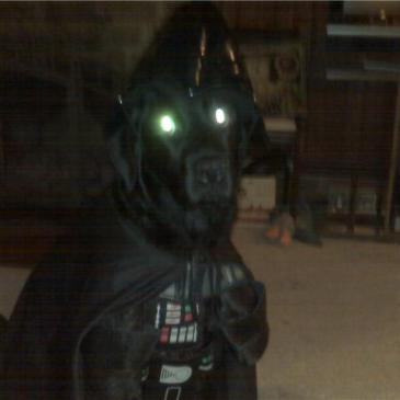 Halloween large dog costume black darth vader star wars