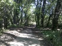 Rotary Club Coshocton River Trail