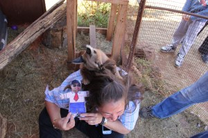 expat life Pretoria wildlife parks petting baby animals