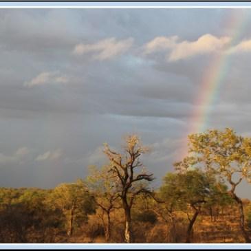 travel Africa rainbow nation