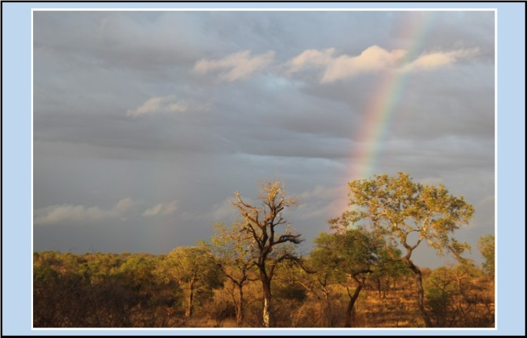 travel Africa rainbow nation