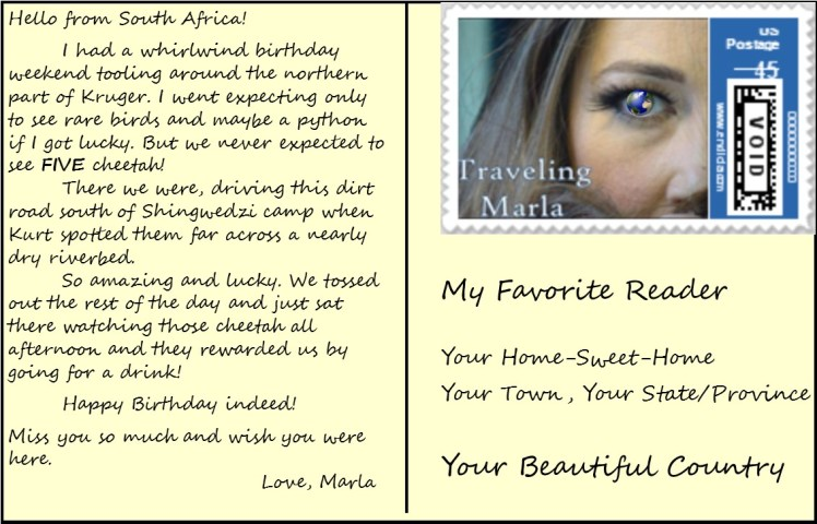 travel Africa postcard