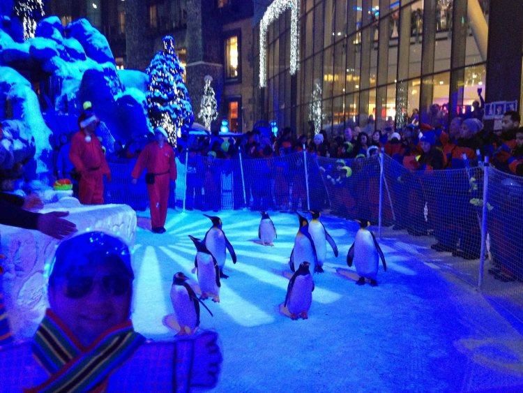 travel Dubai UAE Ski