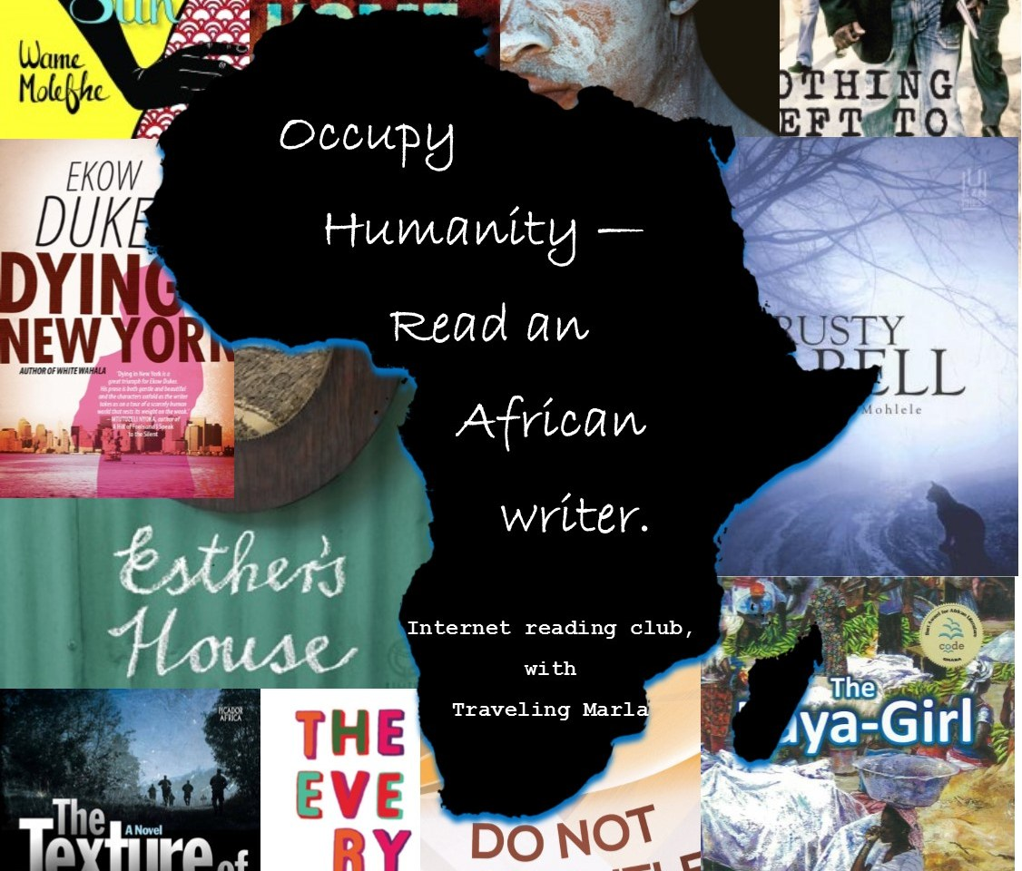 African literature reading