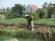 farm work labor Vietnam