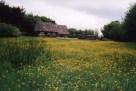 Ulster Folkpark17