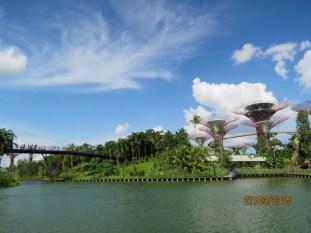 Dragonfly island4