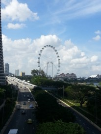 View from MBS bridge2