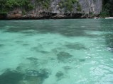 Phi Lei Bay is shallow