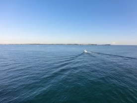 Ferry to Mornington2