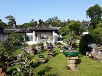 Chinese Garden - Bonsai garden17