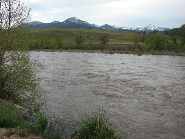 Downstream on the Yellowstone