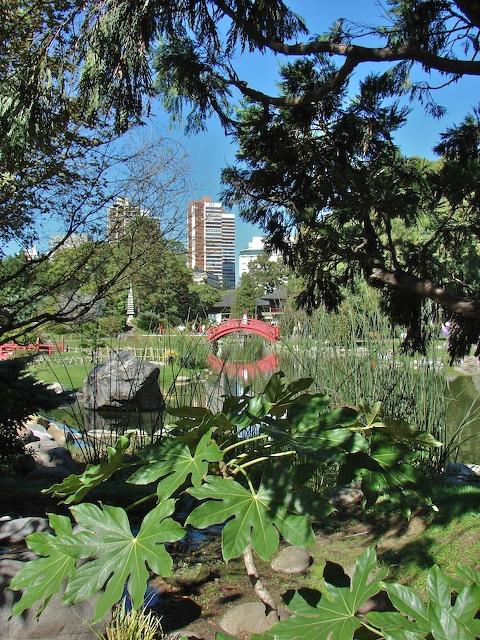 Buenos Aires through the garden