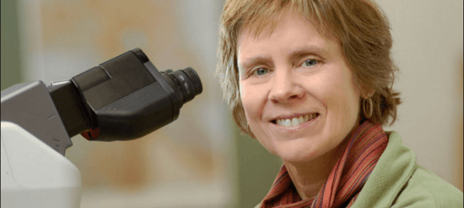 MSU earth sciences professor receives excellence award