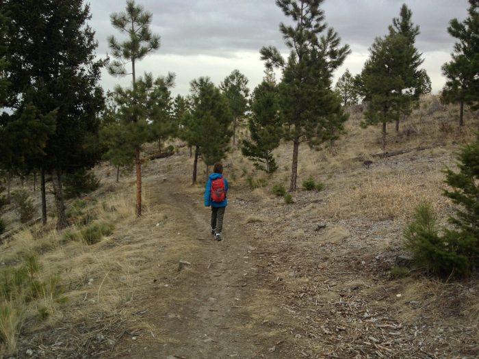 Helena Montana hiking and mountain biking trails