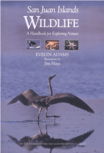 San Juan Islands Wildlife: A Handbook for Exploring Nature By Evelyn Adams