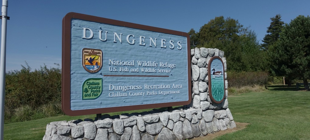 Dungeness Recreation Area Campground Dungeness County Park Places to camp near Olympic National Park
