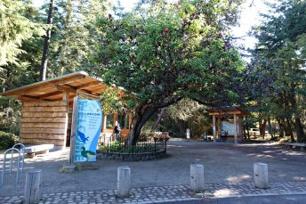 Dungeness Spit National Wildlife Refuge. Campground review Best sites at Dungeness Campground Campgrounds on the Puget Sound