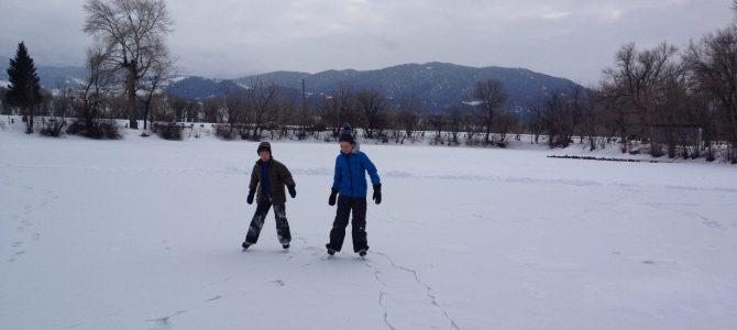 Wild Ice Skating