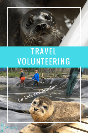 Seal Rescue Ireland is not only one of the great Ireland attractions, it's a place where kids and families can help rescue a seal pup.
