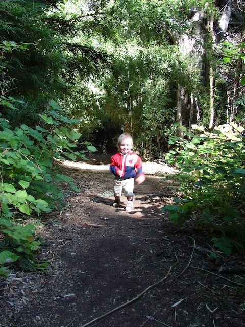 Anders walks the trail