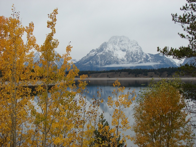 Jenny Lake and Mt Moran