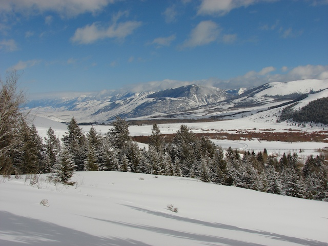 Looking north up the Paradise Valley from Tom Miner Basin