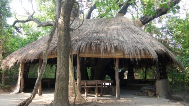 Jungle Junction, Zambia