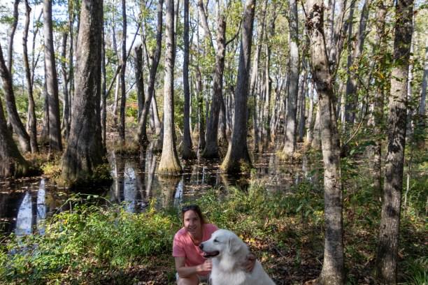 Cypress Swamp along Natchez Trace Parkway
