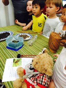 Tasting bugs at the @PYPX