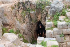 Michael Emerging from Secret Cave