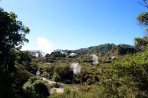 Geothermal Activity Around Rotorua
