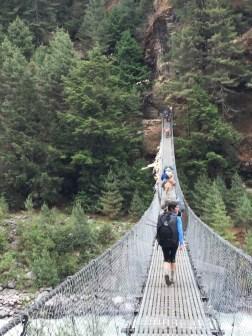 Yak's Impeding Our Way Across the Bridge