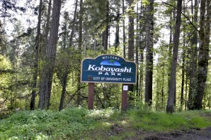 Kobayashi Park is a lovely city park located near the Fred Meyer on Bridgeport Way in University Place.