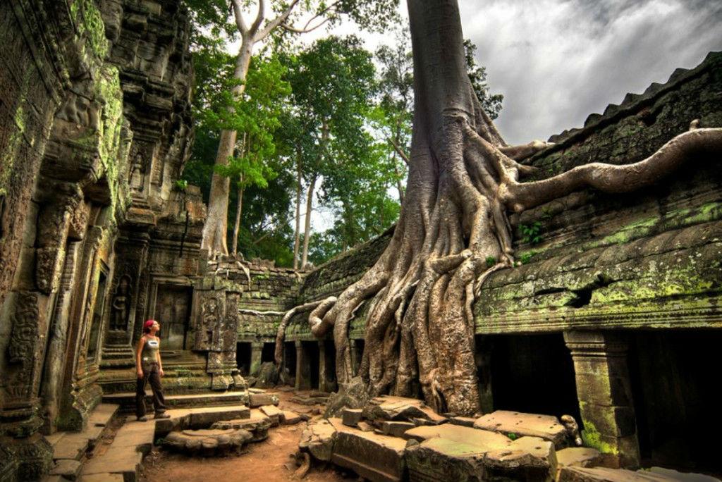Ta-Prohm-temple-Cambodia-1024x684