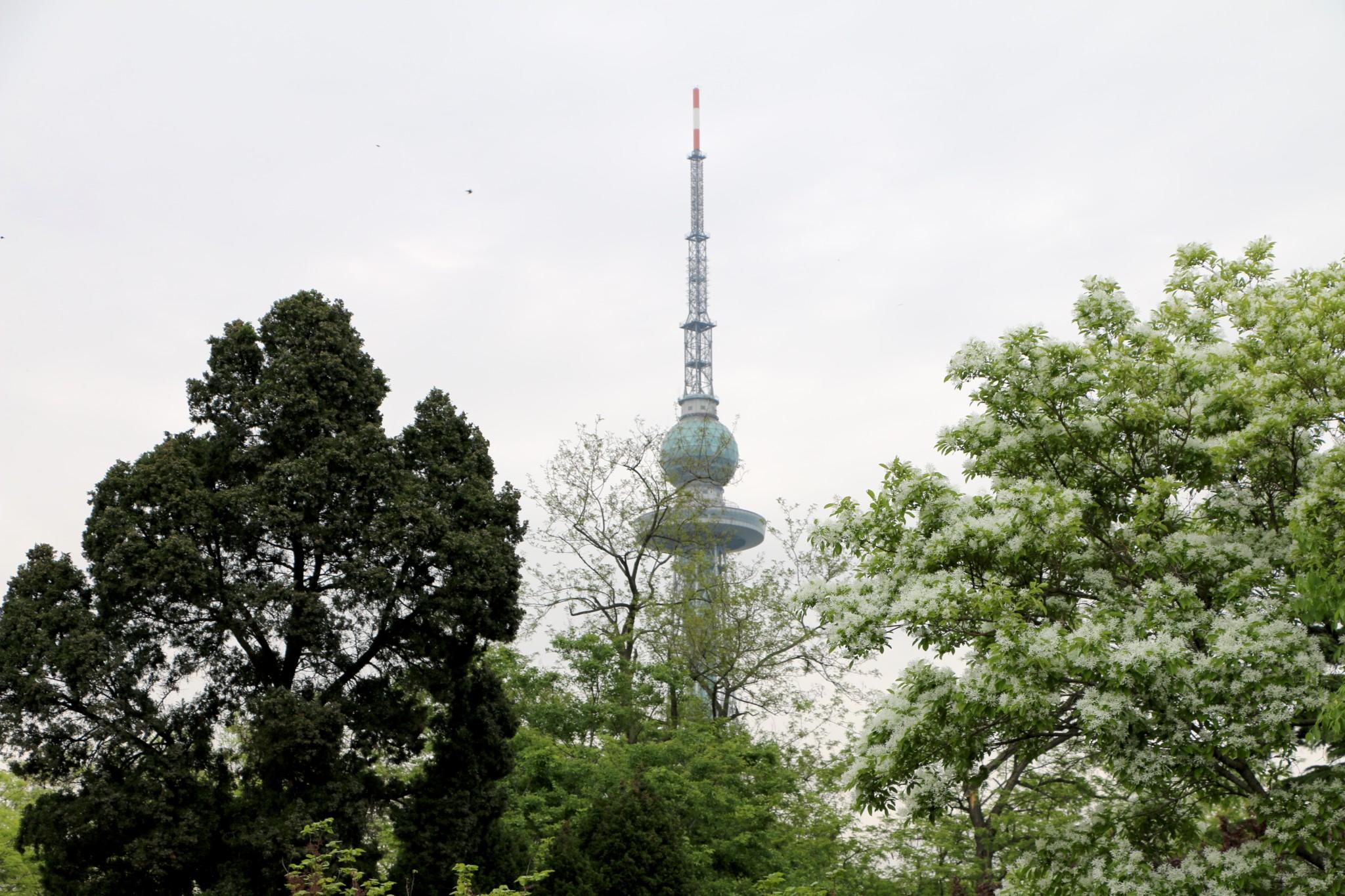 Zhongshan Park Mondays Mari