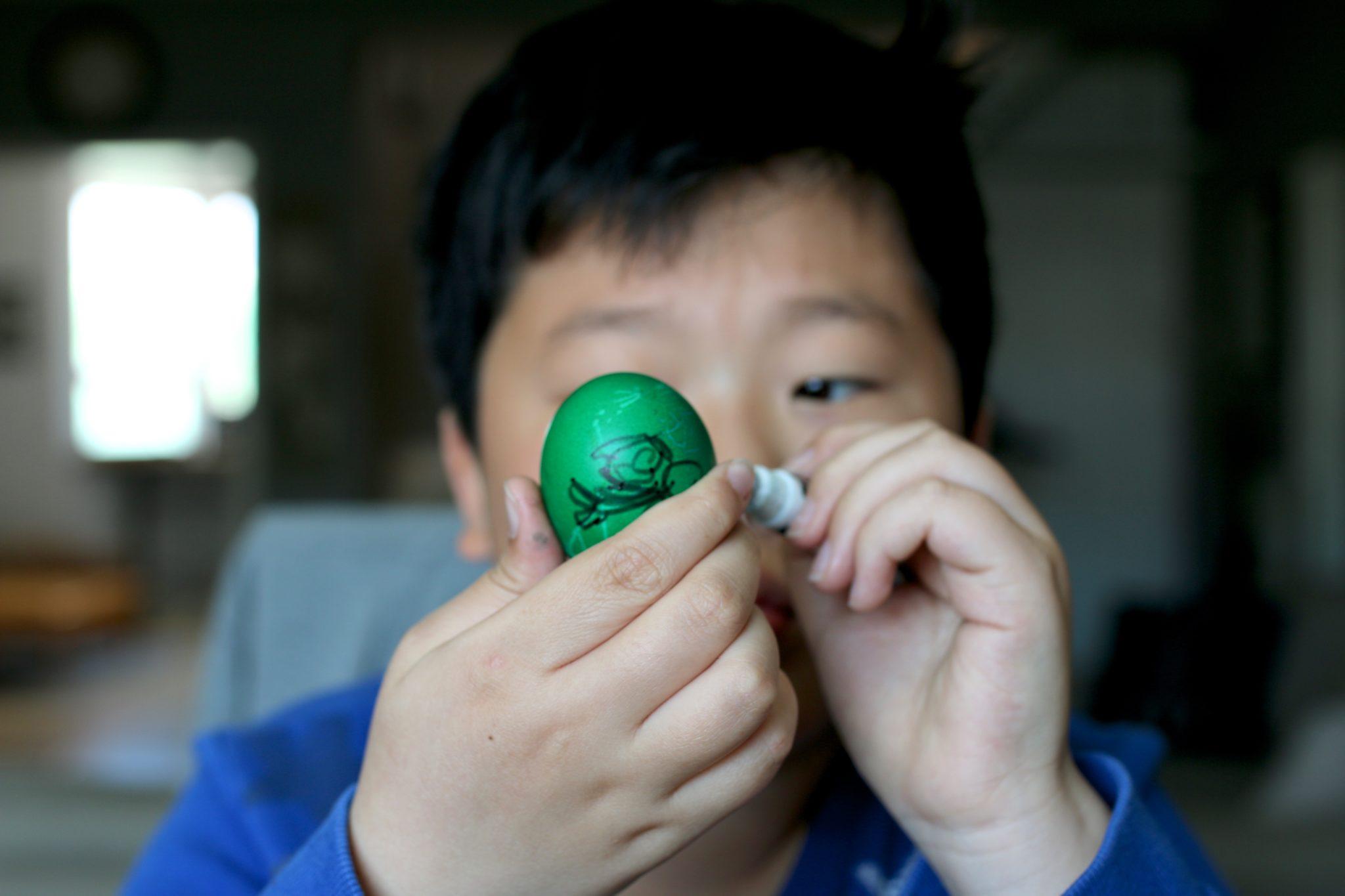 Egg Dyeing Dylan