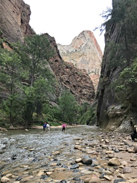 End of Riverside Walk Beginning of the Narrows at Zion National Park