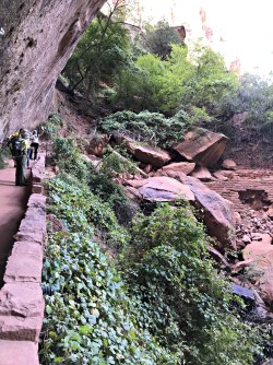 Rockslide at Upper Emerald Pool Trailhead-Zion National Park
