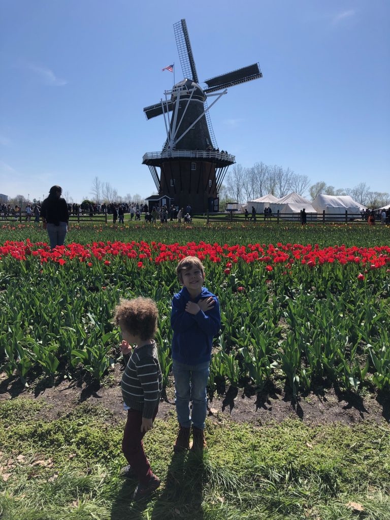 Tulip Time with Kids, Windmill Island Gardens windmill and tulips