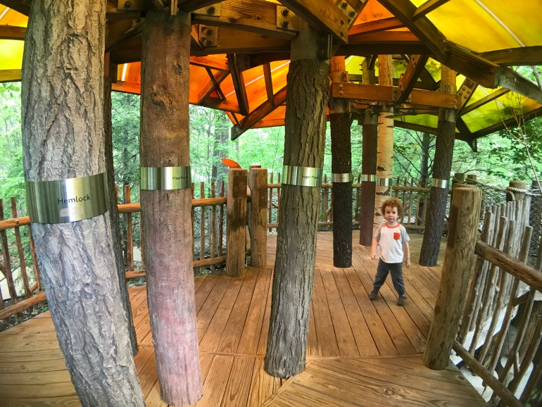Tree House Exhibit at the Frederic Meijer Gardens and Sculpture Park