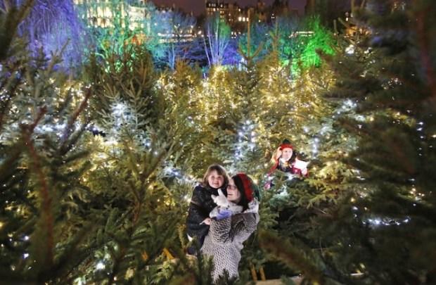 Christmas Maze Edinburgh Christmas Market