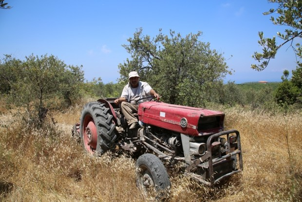 Promax Lebanon Hamat Lebanese Farmer