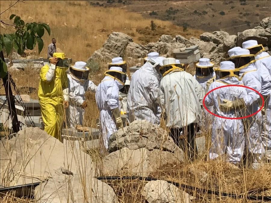 Atelier du Miel Beekeeping Workshop Tannourine