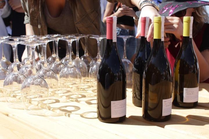 Lebanese Wine Tasting Batroun Tour Lebanon