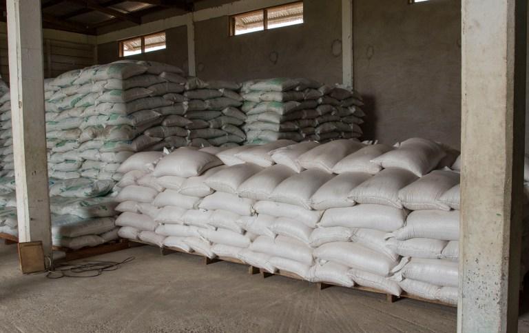 Ghana-Farms-0785