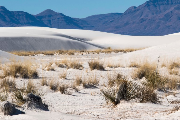 White Sands NM-2447