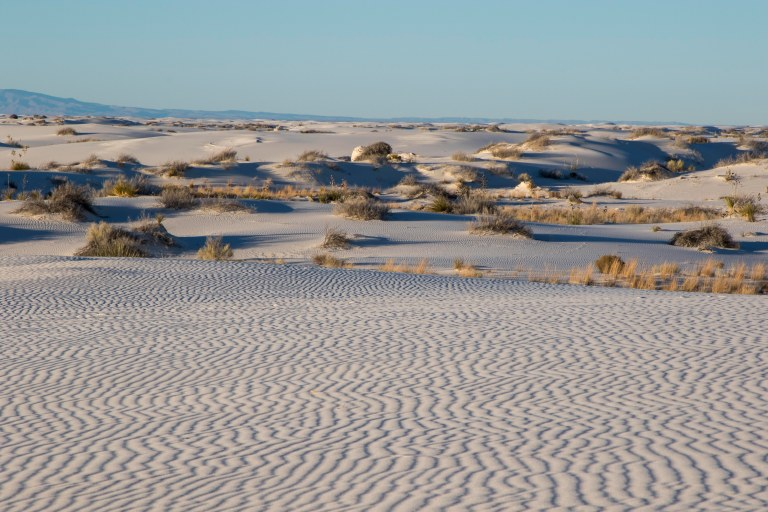 White Sands NM-6004