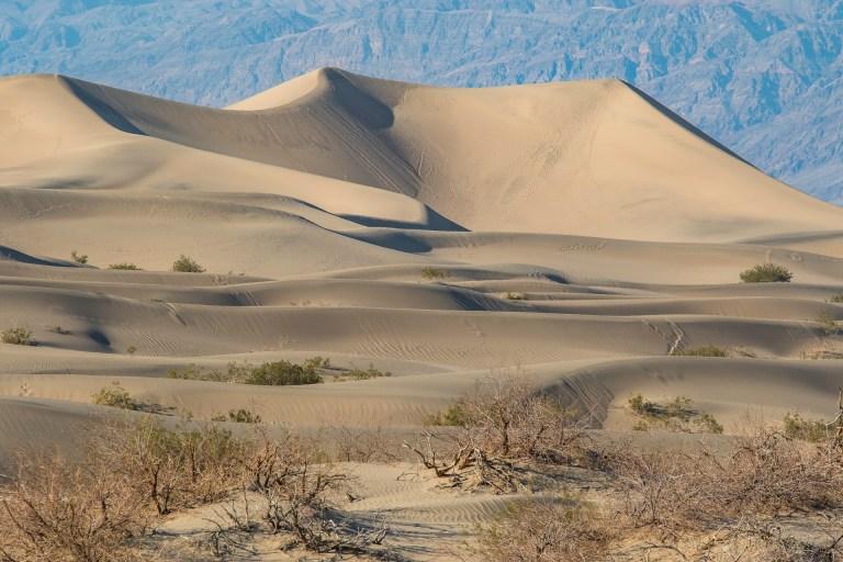 Death Valley-2972